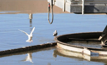 Wastewater Treatment Plant – Public Tour Opportunity